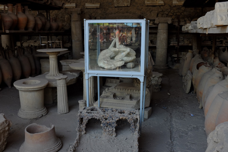 reproduction of the pompeii dog